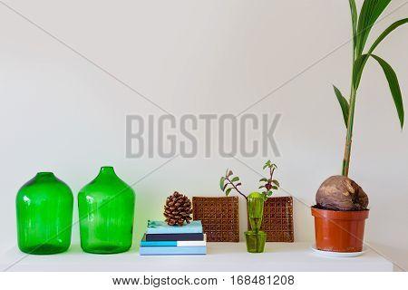 Plants, books and beautiful fireplace mantel decorations