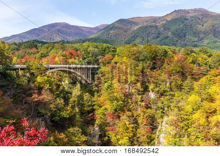 Bridge passing though Naruko Gorge in autumn