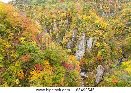 Naruko canyon in Japan at autumn