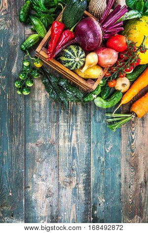 Harvest fresh vegetables autumn still-life on old wooden board in rustic style copyspace