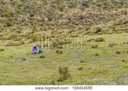 COTOPAXI, ECUADOR, FEBRUARY - 2016 - Couple talking at grass in Cotopaxi national park Ecuador