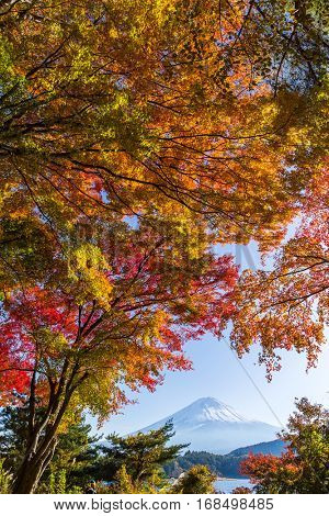 Mount Fuji in Autumn season of Japan