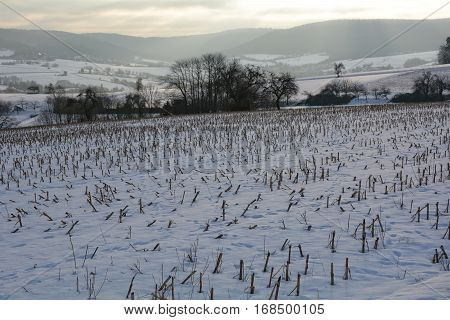 Stubble field in the snow, at sunrise behind the hills