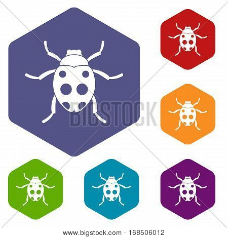 Ladybug icons set rhombus in different colors isolated on white background