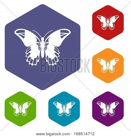 Admiral butterfly icons set rhombus in different colors isolated on white background