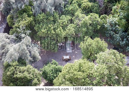 Restaurant in forest surrounded by olive and orange trees with one table and four chares in center and carpets on floor