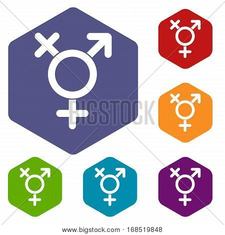 Transgender sign icons set rhombus in different colors isolated on white background