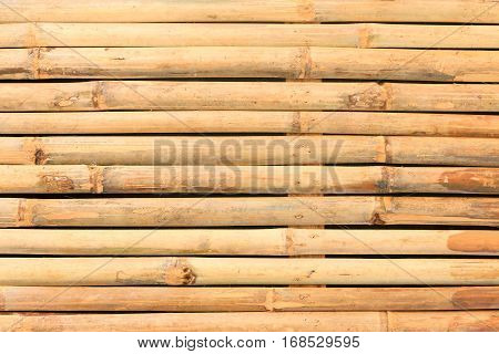 Bamboo background, horizontal, texture of bamboo wall