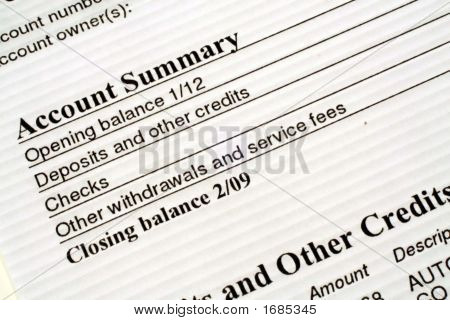 Checking Account Summary