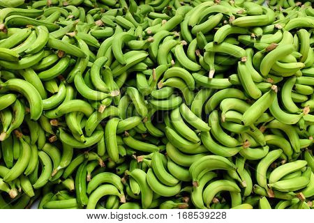fresh picked green bananas pile in the farm