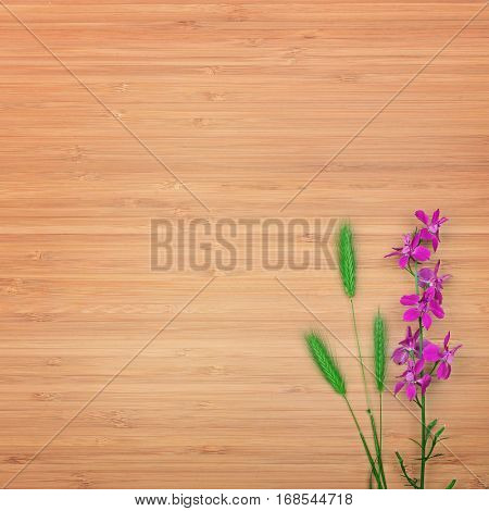 Delphinium flower on a wooden background. Free space for text. The top view.
