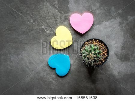 Paper Heart Against And Cactus On Cement Board View From Above, Ladies' Man Concept.