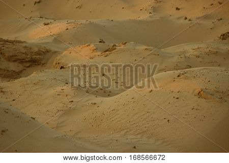 Golden Color Sand Hills