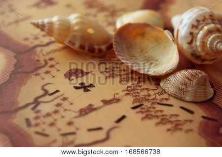 hidden treasure map and shells. pirate lifestyle concept