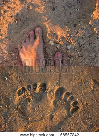 footsteps on beach and foot print collage