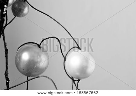 Balls of plastic emulating to fruits in branches of wood