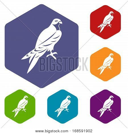 Falcon icons set rhombus in different colors isolated on white background