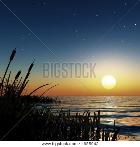 Starry Sunset