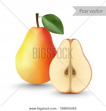 Pear vector isolated on white background. Half pear.