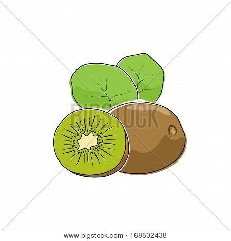 Kiwifruit Isolated on White, Tropical Fruit Kiwi