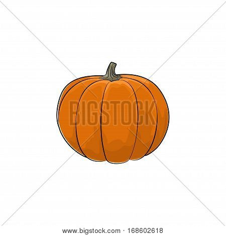 Pumpkin Standing Isolated on White Background, Orange Vegetables Gourd, Edible Fruit