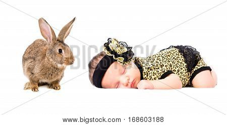Portrait of a cute sleeping newborn girl and rabbit, isolated on white background