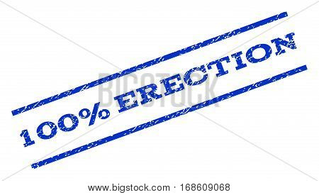 100 Percent Erection watermark stamp. Text tag between parallel lines with grunge design style. Rotated rubber seal stamp with dirty texture. Vector blue ink imprint on a white background.
