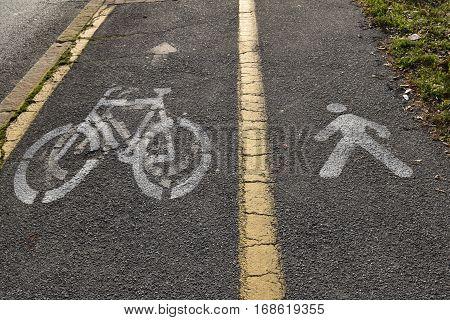 The bike path and pedestrian space along a suburban street urban