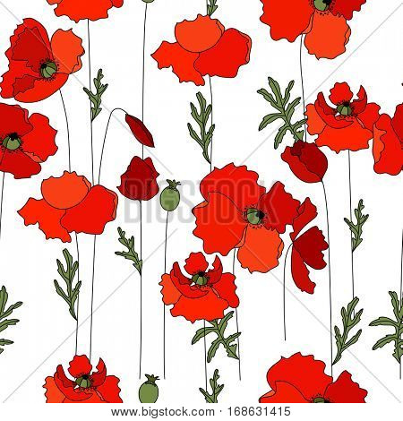 Seamless pattern made of red poppies and herbs. Endless floral texture