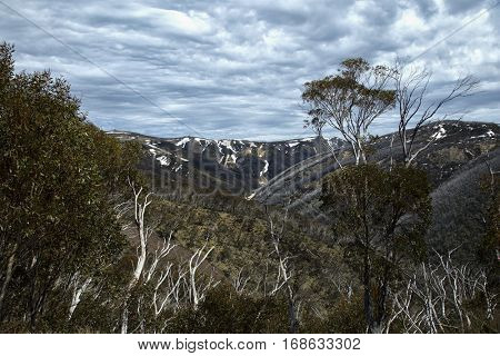 Beautiful view from mount Hotham with snow on top on great alpine road in Victoria, Australia