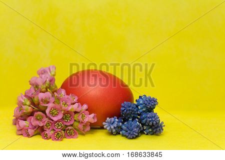 red Easter egg with bergenia and hyacinth