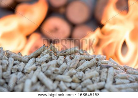 wooden Biomass in flames infront wall of wood