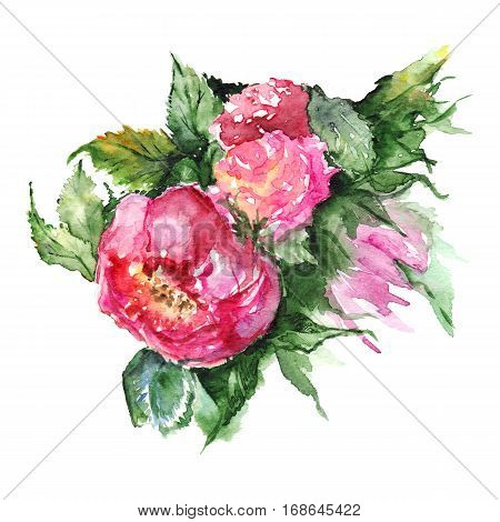 Watercolor flower floral peony boutonniere isolated illustration