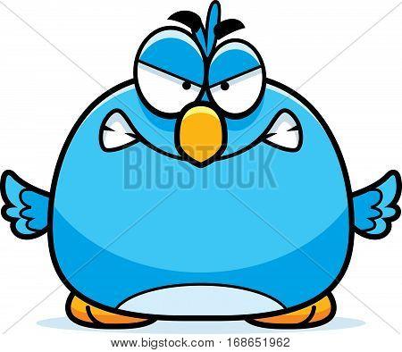 Angry Little Bluebird