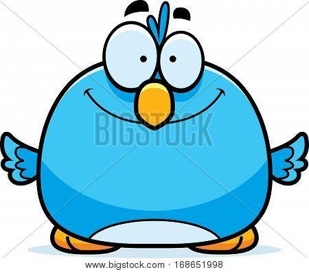 Smiling Little Bluebird