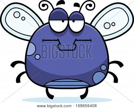 Bored Little Fly