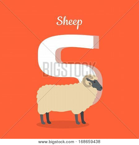 Animal alphabet vector concept. Flat style. Zoo ABC with domestic animal. Sheep standing on red background, letter S behind. Educational glossary. For children s books, textbooks illustrating