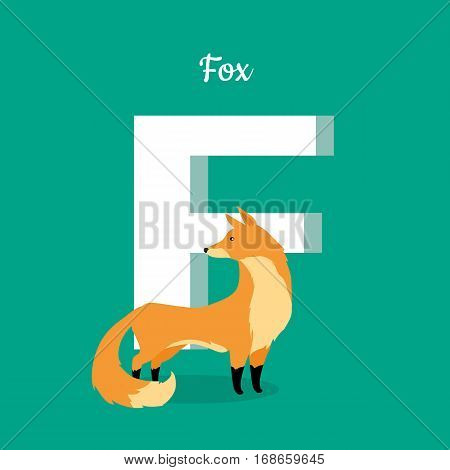 Animal alphabet vector concept. Flat style. Zoo ABC with wild animal. Beautiful fox standing on green background, letter F behind. Educational glossary. For children s books, textbooks illustrating