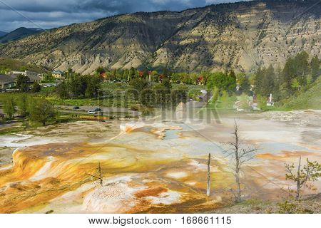 Vivid Canary Spring area at thermal terraces rock formations in Mammoth Hot Springs, Yellowstone National Park. USA