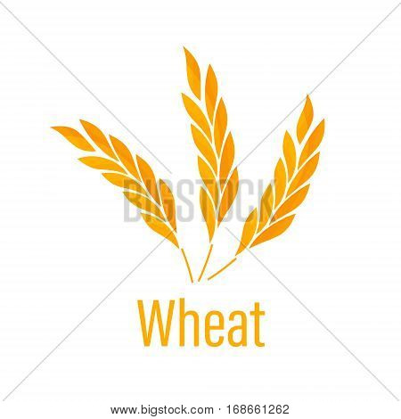Gluten free icon. Ears of Wheat icon. Agricultural symbols isolated on white background. Design elements for bread packaging or beer label. Bakery Logo Badge with wheat.