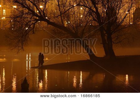 The night view of the beautiful romantic Kampa Island in the River Vltava - Prague City - Czech Republic - Europe