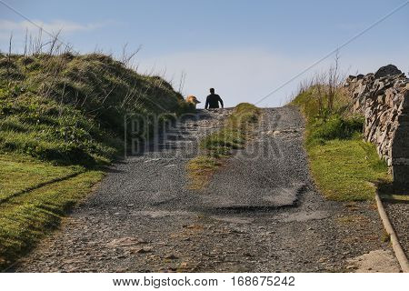 Silhouetted man walking dog on country road, alone, low angle view