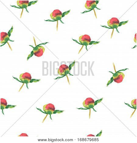 Pink peony bud on white background. Seamless watercolor pattern. Could be used for textile or in design
