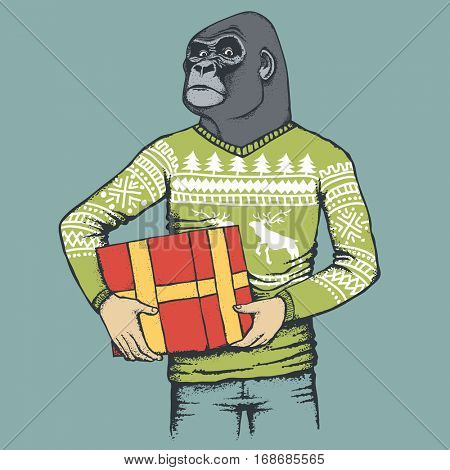 Monkey vector concept. Illustration of African gorilla in human sweatshirt or sweater. Monkey with gift