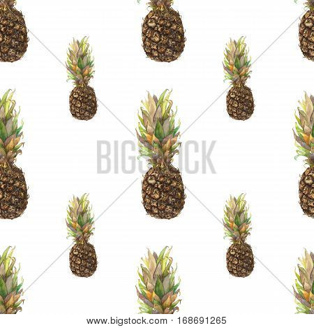 Pineapple ananas with colorful leaves on white background. Seamless watercolor pattern. Could be used for textile or in design