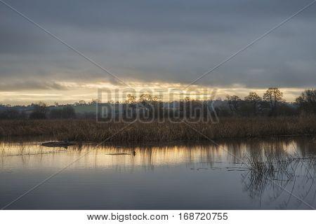 Beautiful Late Winter Sunset Over Wetlands Lake Landscape