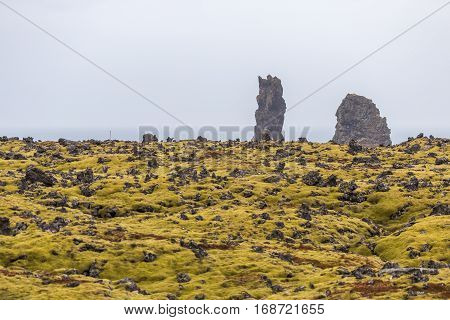 Lava field on the Icelandic south coast at Snaefellsnes peninsula with lush green moss and rugged cliffs and rock formations on the seashore. Horizon above sea is visible in hazy background