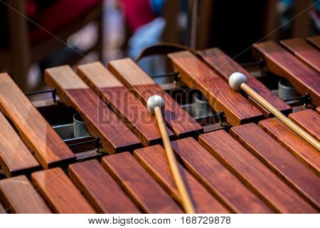 Close view on wooden old instrument xylofone