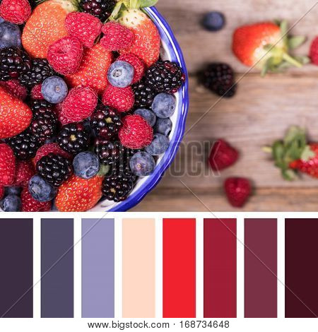Summer fruits in a ceramic bowl, overhead view. In a colour palette with complimentary colour swatches.