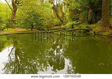 Garden corner with plants reflection in the water. Scenic old park on Sao Miguel Island archipelago Azores Portugal.